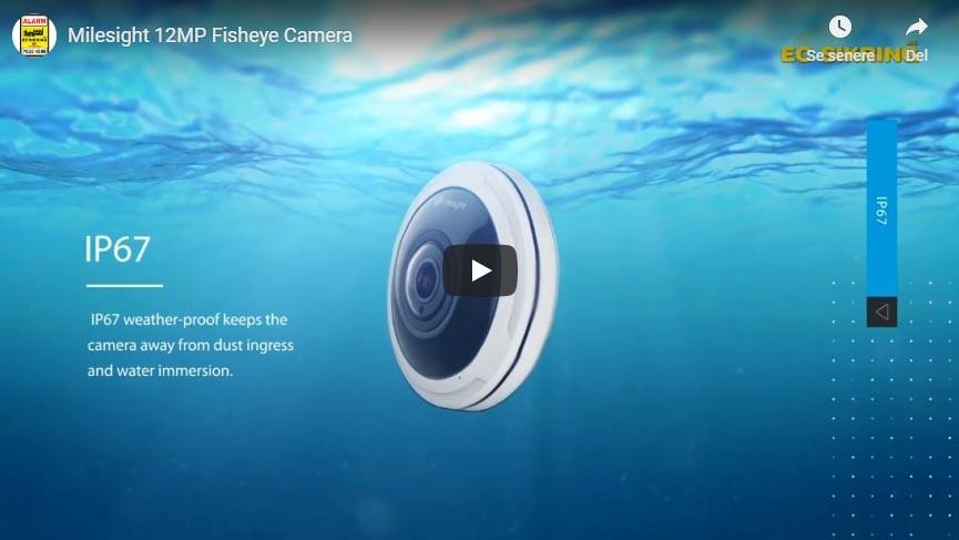 Milesight 12MP Fisheye Camera